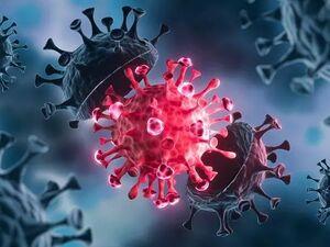 خطرات بیشتر سویه مکزیکی کروناویروس