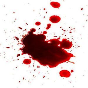 قتل چوپان ایرانی در ترکیه با شلیک گلوله