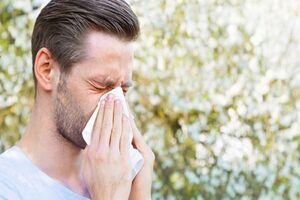۵ نکته اساسی در خصوص حساسیتهای پاییزی