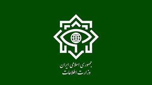 سربازان گمنام امام زمان(عج)یک تیم ضد امنیتی درجنوب کشور رامتلاشی کردند