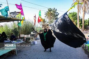 عکس/ پیادهروی زائران اربعین در «طریق العلما»
