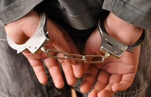 تاثیر کرونا بر میزان جرایم در تهران