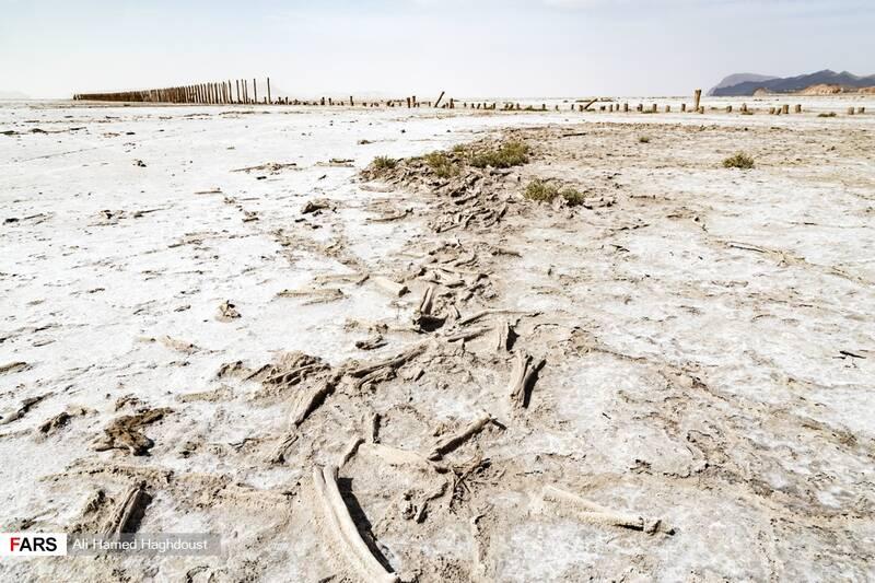 ساحل دریاچه ارومیه در نزدیکی بندر رحمانلو