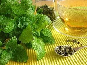 استفاده از چای بادرنجبویه در یک بیماری قلبی