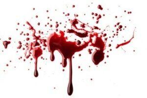 بازداشت آهنگساز به اتهام قتل همسر