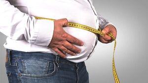 چاقی با پرخوری ارتباطی ندارد