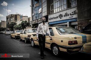 رانندگان تاکسی اجازه سوار کردن چهار مسافر را پیدا کردند؟