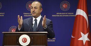 ترکیه اظهارات ماکرون درباره تاریخ الجزایر را رد کرد
