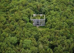 عکس/ عمارتی متروکه در دل جنگل
