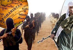 طالبان: برای مقابله با داعش نیازی به آمریکا نداریم