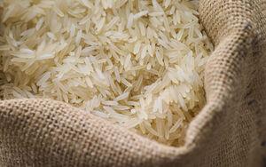 قیمت برنج داخلی به ثبات میرسد