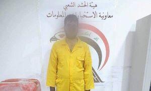 مسئول انتقال عناصر داعش در بغداد دستگیر شد