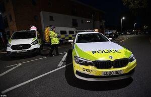 عکس/ قتل نماینده پارلمان انگلیس با ضربات چاقو