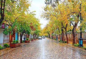 عکس/ پاییز دیدنی شیراز