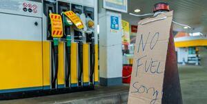 مردم آلمان برای خرید ارزان سوخت به کشور همسایه هجوم می برند