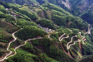 عکس/ جادهای مارپیچ در ارتفاعات چین