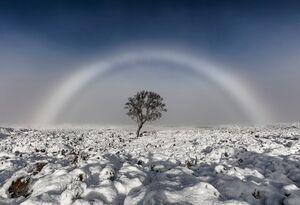 برترین تصاویر آب و هوا جهان