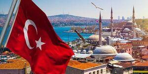 صف عجیب دریافت تخممرغ در ترکیه+فیلم