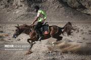 عکس/ مسابقات سوارکاری استقامت در اصفهان