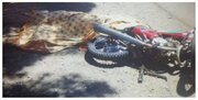 سه شهروند قمی در حادثه موتورسیکلت جان باختند