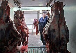 گوشت قرمز ارزان شد