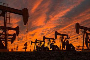 قیمت نفت خام در بالاترین سطح ۷ ساله