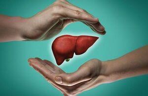 افزایش موارد ابتلا به بیماری کبدی مرتبط با چاقی