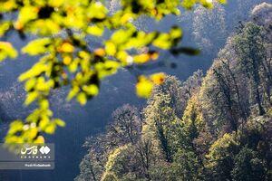 عکس/ طبیعت پاییزی تالش را ببینید