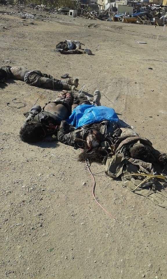 تلفات سنگین داعش در درگیریهای رمادی+تصاویر