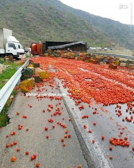 تصادف گوجه ای کامیون ها در کازرون/عکس