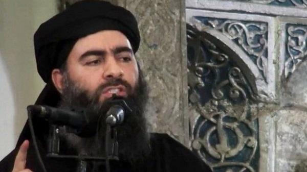تفاوت تروریستهای القاعده در نقاط مختلف دنیا چیست/ با نقاط مثبت نبردهای نظامی داعش آشنا شوید