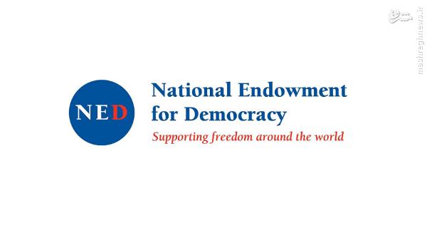 NED؛ یک سازمان غیردولتی اپوزیسیون ساز و کودتاچی