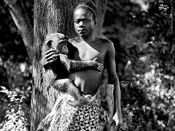 باغوحشهای انسانی نماد تمدن غربی