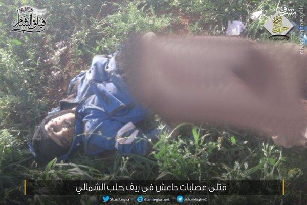 عملیات ارتش در شمال حلب/حمله مجدد داعش به جاده تدارکاتی خناصر- اثریا/پیشروی داعش در عمق مواضع گروههای رقیب/شکست حملات داعش علیه ارتش سوریه در القلمون