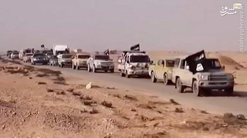 آغاز فرار داعش از تدمر+عکس