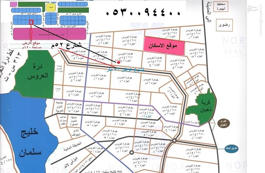 «دره العروس» منطقهای برای فساد و فحشا شاهزادگان و امرای سعودی/ از راهاندازی شبکه روسپیگری تا برگزاری جشنهای مختلط  عکس و فیلم