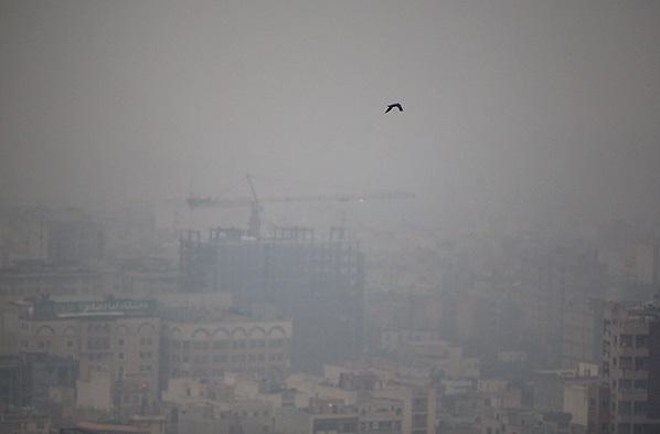 ابتکار برای روزهای ناسالم جشن روز ملی هوای پاک گرفت/ مردم نگران نباشند پکن و دهلی و آتن و مادرید هم آلوده است!