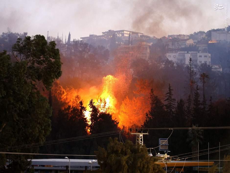 بازهم بوی آتش از حیفا به مشام میرسد/ آتشسوزیهایی که سید حسن نصرالله خبرش را داده بود