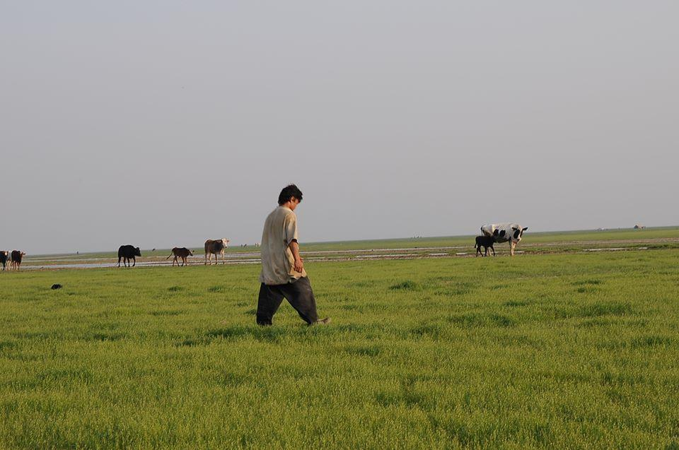 آیا فشار گرد و خاکهای خوزستان مسئولین را به عقل وا میدارد؟