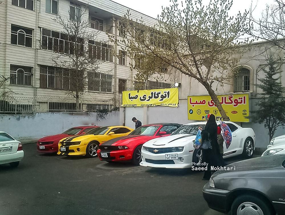 عکس/ آمریکاییهای رنگارنگ در تهران