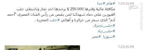 تعیین جائزه تروریستهای تکفیری برای سر بازیگر مصری+عکس