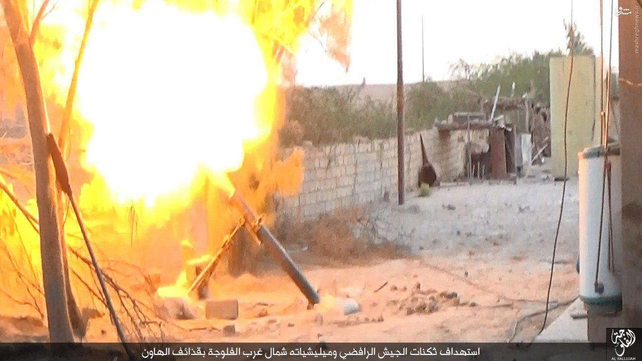 نبردهای فلوجه به روایت داعش+عکس