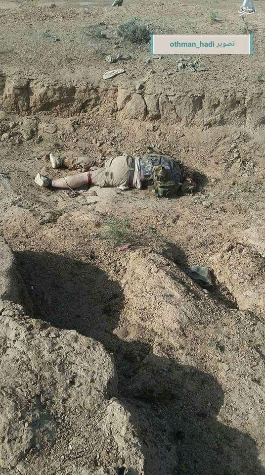 هلاکت 5 انتحاری داعش در شرق فلوجه+عکس