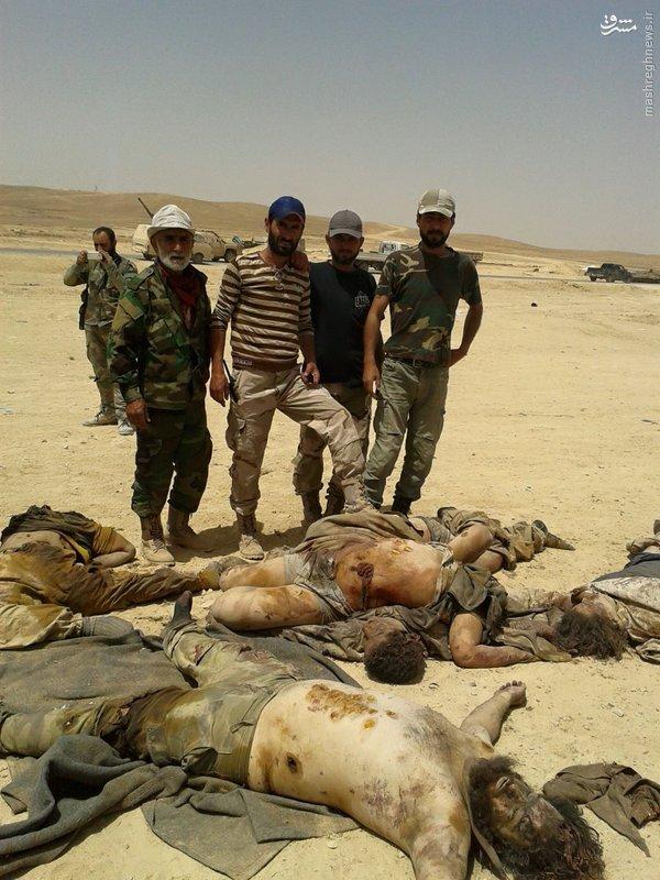 هلاکت 25 داعشی در شمال حمص+عکس