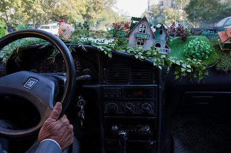 درد دلهای «تاکسی جنگلی» +تصاویر