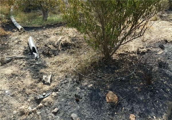 200 هکتار از باغات سیاهو در آتش سوخت +تصاویر