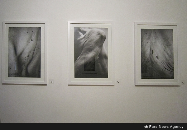 پاسخ ارشاد در مورد مجوز نمایشگاه تصاویر برهنه در تهران
