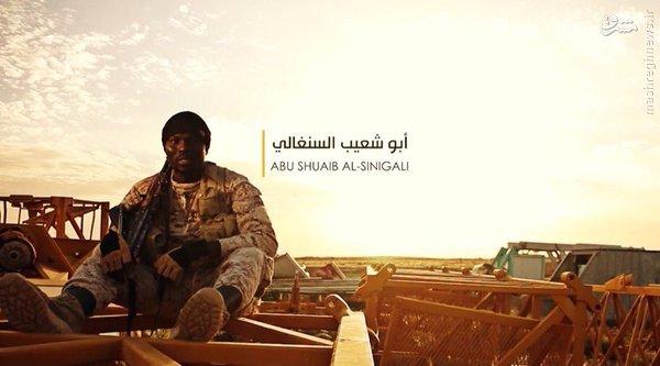 گسترش فعالیتهای القاعده و داعش در آفریقا+عکس