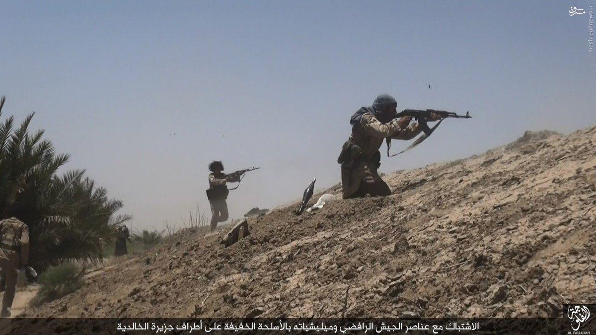 درگیری های صقلاویه فلوجه به روایت داعش+عکس
