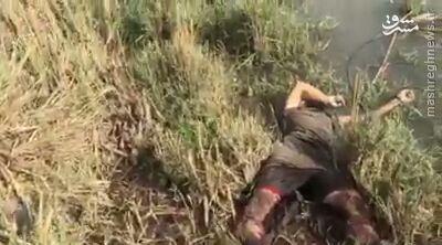 شکست عملیات نفوذ داعش به صقلاویه فلوجه+عکس